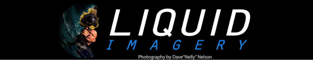 Liquid Imagery banner